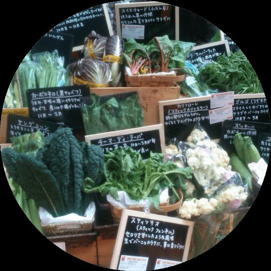 ヨーロッパ野菜のイメージ画像